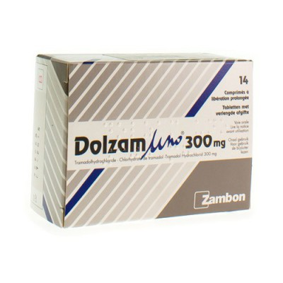 DOLZAM UNO 300 TABL 14 X 300 MG